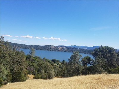 Clearlake Oaks Residential Lots & Land For Sale: 11742 Konocti Drive