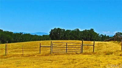 Kelseyville Residential Lots & Land For Sale: 8500 Wight Way