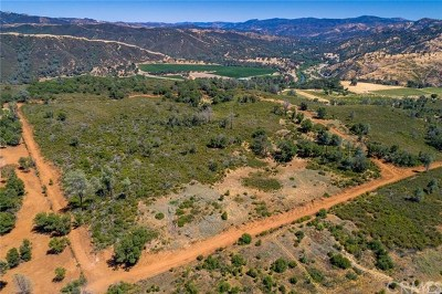 Clearlake Residential Lots & Land For Sale: 850 Old Long Valley Road