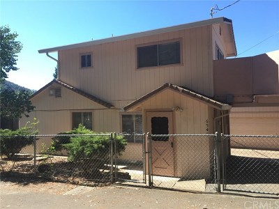 Kelseyville Single Family Home For Sale: 6547 Forestview Drive