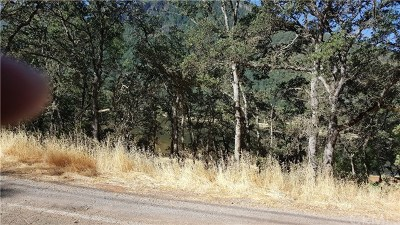 Kelseyville Residential Lots & Land For Sale: 8479 Little Borax Lake Road