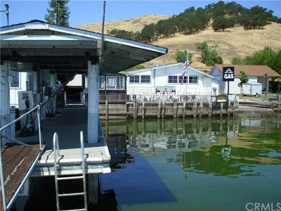Lakeport CA Commercial For Sale: $1,200,000