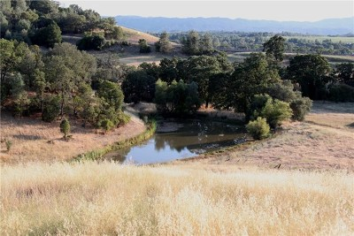 Kelseyville Single Family Home For Sale: 6213 Wilkinson Road