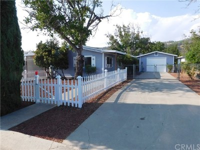 Clearlake Oaks Manufactured Home For Sale: 14167 Chestnut Lane