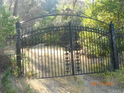 Kelseyville Residential Lots & Land For Sale: 6185 Soda Bay Road