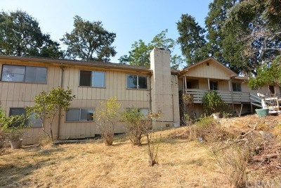 Lakeport Single Family Home For Sale: 4724 S Terrace Avenue