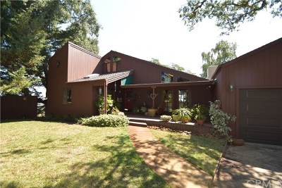 Lakeport Single Family Home For Sale: 5085 Hill Road E