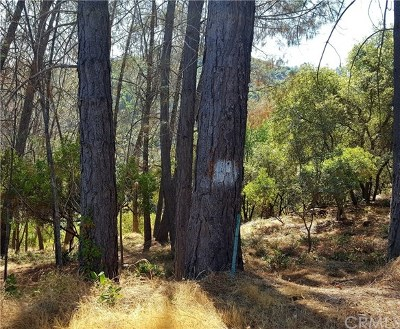 Kelseyville Residential Lots & Land For Sale: 4690 Iroquois
