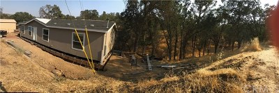 Lower Lake Manufactured Home Active Under Contract: 16963 Big Bear Road