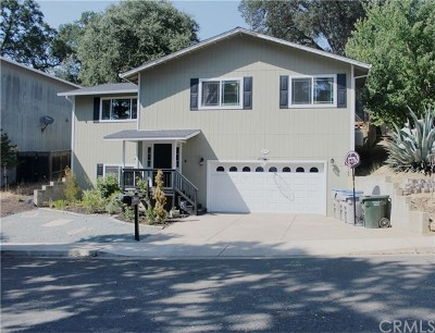 Lakeport Single Family Home For Sale: 1210 Sixth Street