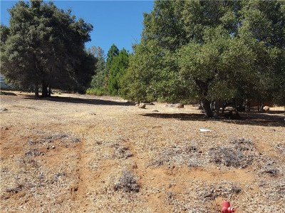 Kelseyville Residential Lots & Land For Sale: 3213 Evergreen Lane