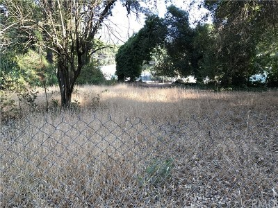 Kelseyville Residential Lots & Land For Sale: 6415 Hohape Avenue