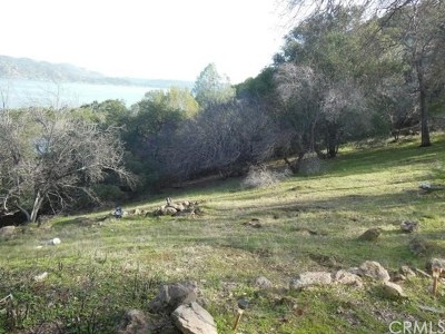 Kelseyville Residential Lots & Land For Sale: 10632 Edgewater Drive