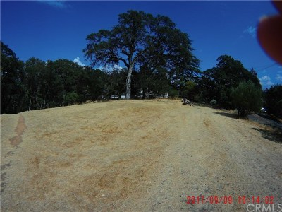 Lakeport Residential Lots & Land For Sale: 1130 Central Park Avenue