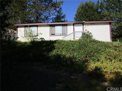 Kelseyville Manufactured Home For Sale: 8985 Highway 175