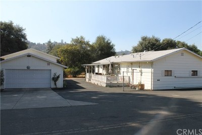 Clearlake Single Family Home For Sale: 3177 13th Street