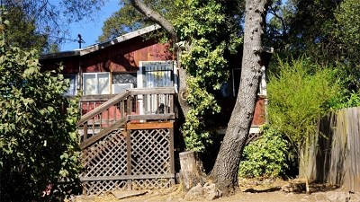 Clearlake Single Family Home For Sale: 14730 Uhl Avenue