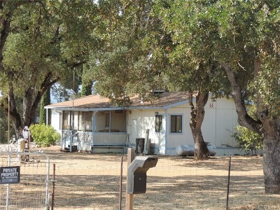 Clearlake Single Family Home For Sale: 4375 Moss Avenue