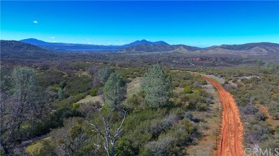 Lake County Residential Lots & Land For Sale: 2122 Ogulin Canyon Road
