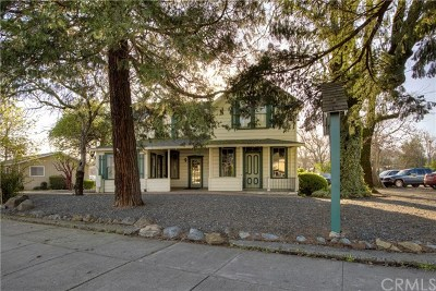 Lake County Commercial For Sale: 21048 Calistoga Road