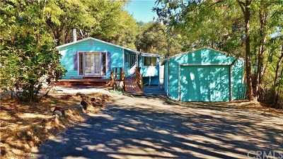 Clearlake Single Family Home For Sale: 3618 Vista Street