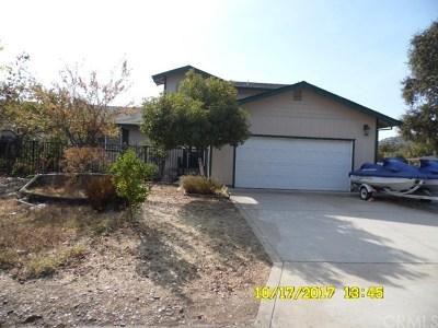 Clearlake Oaks Single Family Home For Sale: 13079 Venus