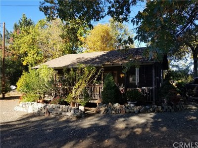 Lakeport Single Family Home For Sale: 1370 Scotts Valley Rd