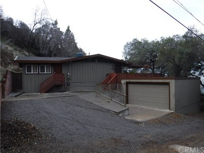 Clearlake Single Family Home For Sale: 11535 San Jose Avenue