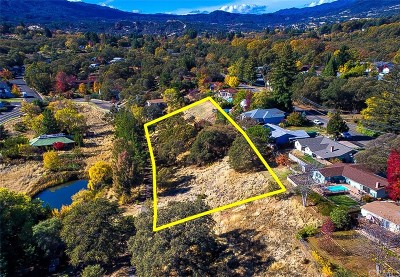 Lakeport Residential Lots & Land For Sale: 850 Adams Street