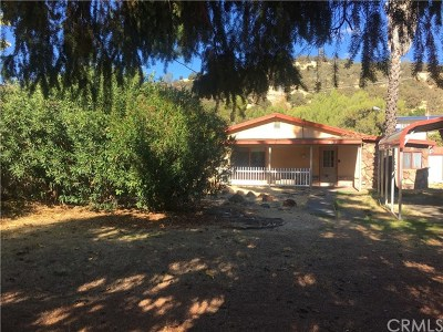 Clearlake Single Family Home For Sale: 13212 1st Street