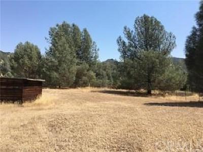 Clearlake Oaks Residential Lots & Land For Sale: 2905 Meadow Creek Road