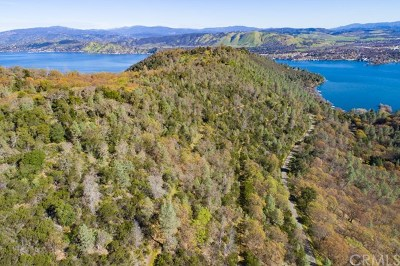 Lake County Residential Lots & Land For Sale: 13380 Point Lakeview Road