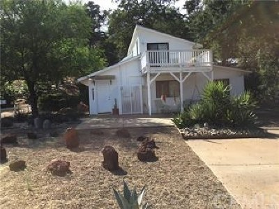 Clearlake Single Family Home For Sale: 3060 Oak Crest Dr