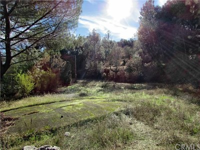 Clearlake Oaks CA Residential Lots & Land For Sale: $49,000