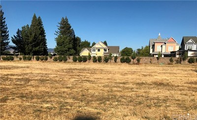 Lakeport Residential Lots & Land For Sale: 1930 S Main Street