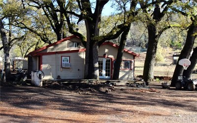 Lower Lake Single Family Home For Sale: 10700 Rocky Creek Road