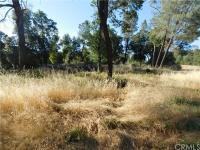 Lake County Residential Lots & Land For Sale: 6181 Manzanita Avenue