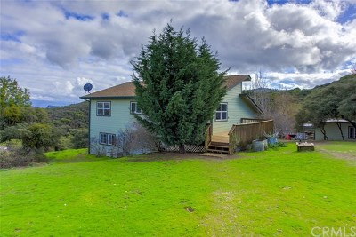 Lakeport Single Family Home For Sale: 13387 Adobe Creek Road