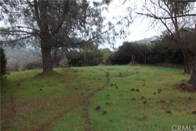 Kelseyville Residential Lots & Land For Sale: 4597 Hawaina Way