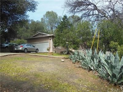 Kelseyville Single Family Home For Sale: 10414 Boren Bega Drive