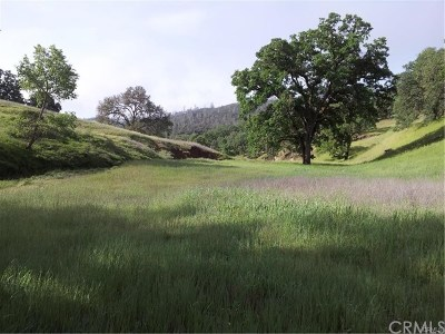 Lower Lake Residential Lots & Land For Sale: 20102 Morgan Valley Road