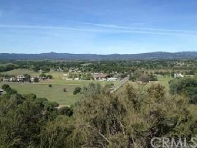 Kelseyville Residential Lots & Land For Sale: 5325 Konocti Road