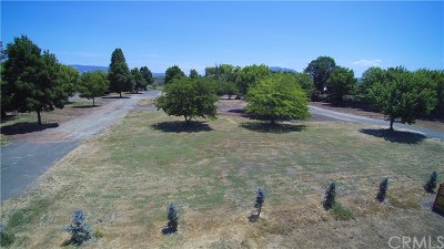 Lakeport Residential Lots & Land For Sale: 20 Queen Ann Way