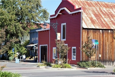 Upper Lake Commercial For Sale: 9510 Main Street