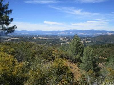 Kelseyville Residential Lots & Land For Sale: 10735 Adobe Creek Road