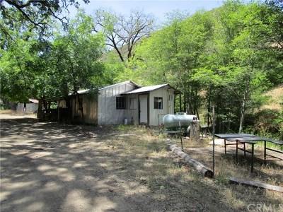 Kelseyville Residential Lots & Land For Sale: 9885 Adobe Creek Road