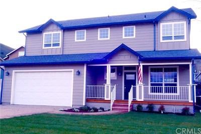 Lakeport Single Family Home For Sale: 4155 Roger Street
