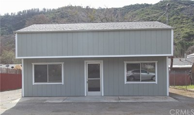 Upper Lake Commercial For Sale: 5147 W State Highway 20
