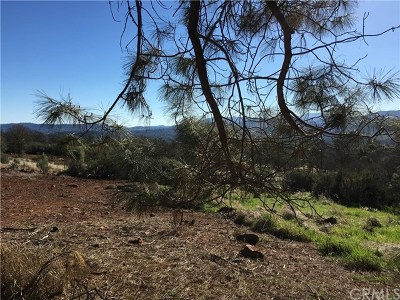 Clearlake Residential Lots & Land For Sale: 16445 19th Avenue
