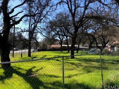 Clearlake Oaks Residential Lots & Land For Sale: 12760 E Highway 20